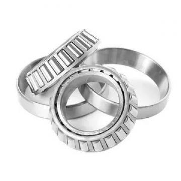 280 mm x 380 mm x 100 mm  NBS SL024956 cylindrical roller bearings